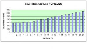 Achilles 28.4.16