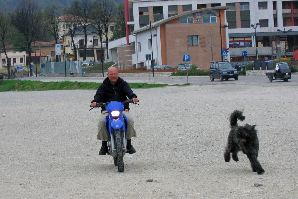 Hundezucht Hessen